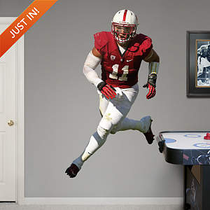 Shayne Skov - Stanford Fathead Wall Decal